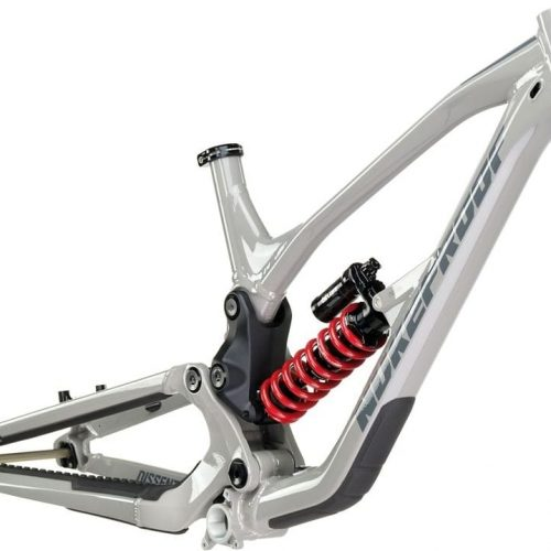 Nukeproof Dissent DH 2020
